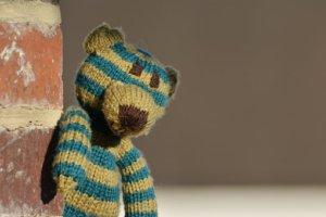 teddy-1955316__340